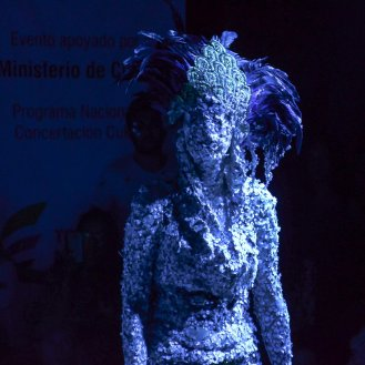 Julie Pichavant Les poissons ne posent pas de question -Los peces no hacen preguntas performance- Proyecto Hemybricom Brevispini Festival Performance para la vida Maria Teresa Hincapié Armenia- Colombia